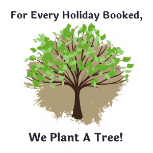 plant a tree icon