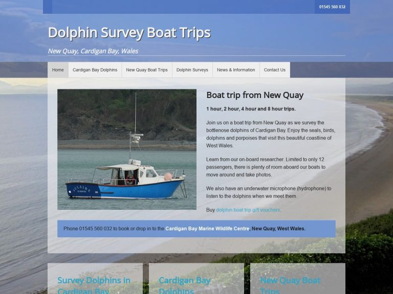 Dolphin Survey Boat Trips website screenshot